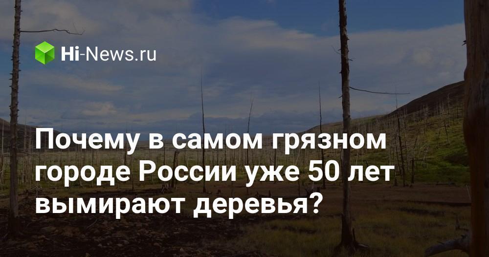 Почему в самом грязном городе России уже 50 лет вымирают деревья?