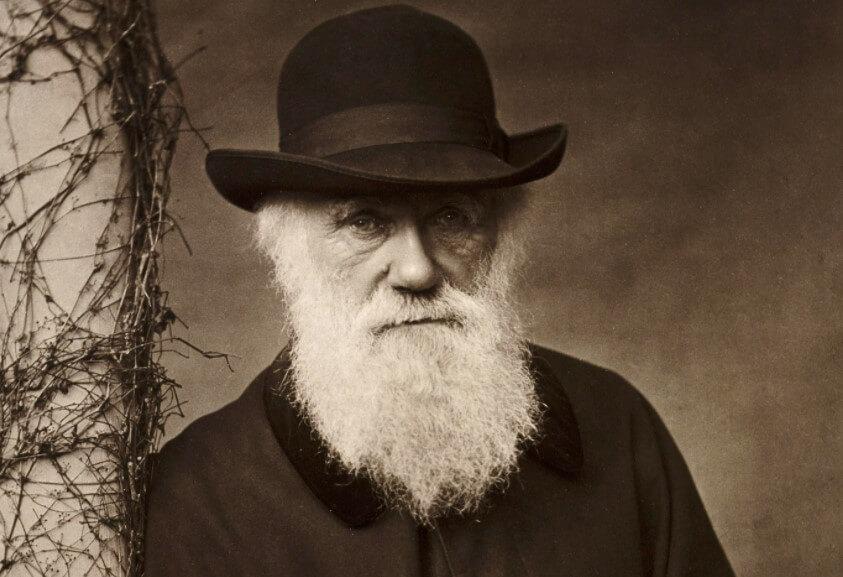 Что Чарлз Дарвин писал в своих записных книжках и где они хранятся?