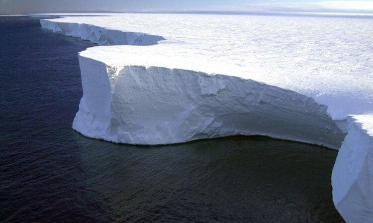 Самый большой айсберг в мире угрожал жизни животных. Что с ним стало теперь?