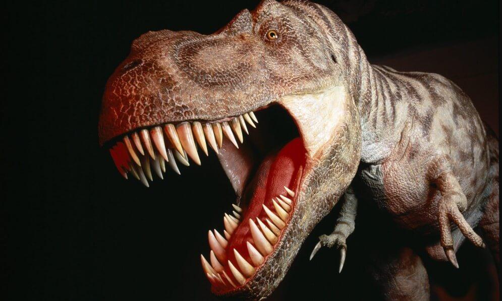 Почему динозавры — самые опасные животные в истории?