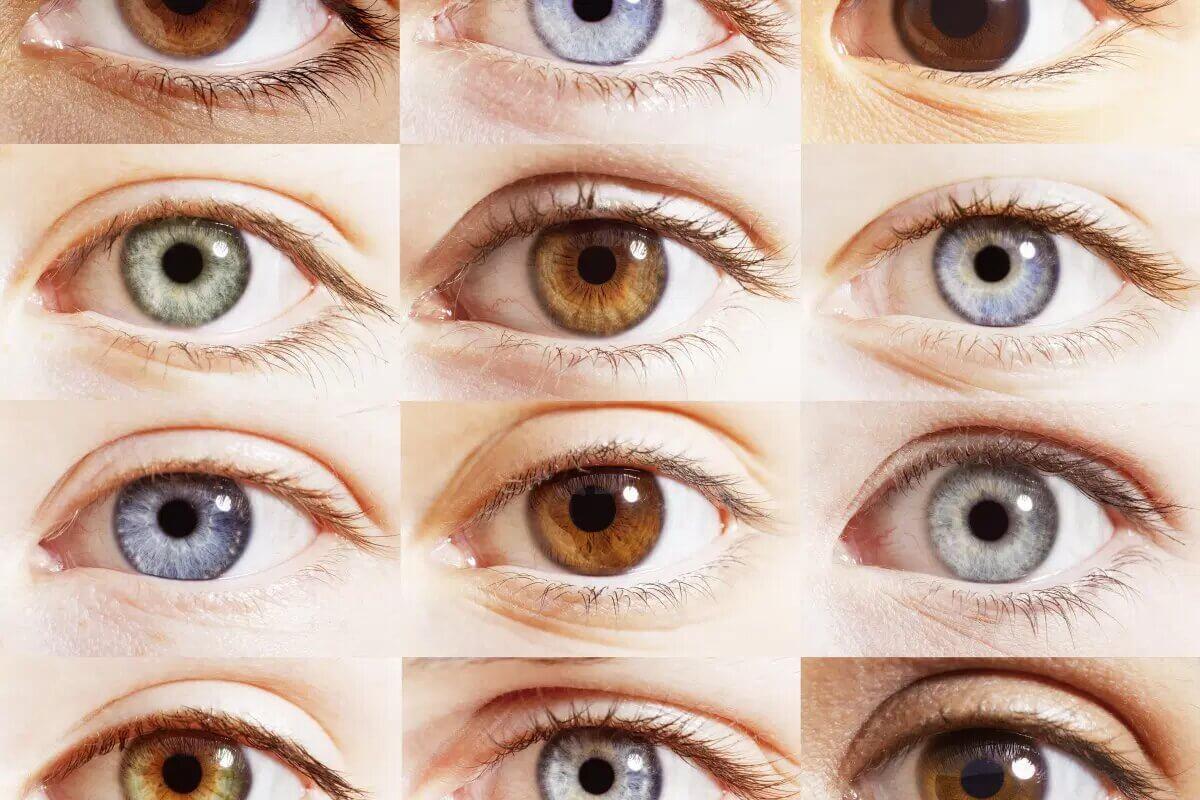 Почему глаза разного цвета и какой цвет самый редкий