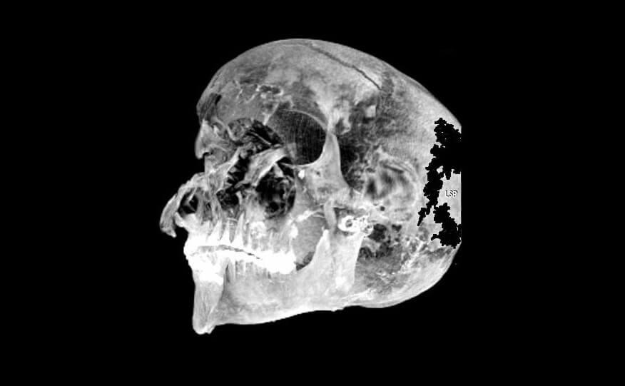 Ученые узнали причину гибели египетского фараона. Она была жестокой
