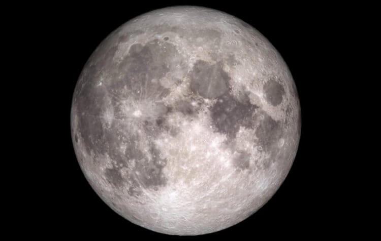 На Луне хотят построить склад с генами животных. Для этого потребуется 250 ракет