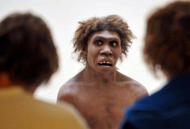 Насколько хорошо разговаривали неандертальцы?
