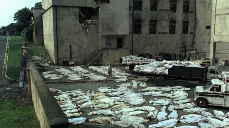 Результаты исследования показали, что гипотетический зомби вирус оставит в живых менее 300 человек.