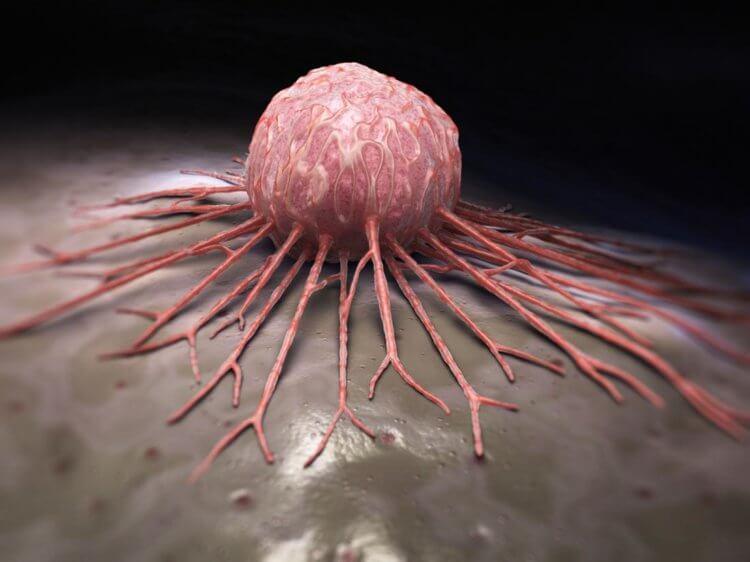Лечение рака мРНК вакцинами поможет при агрессивных формах онкологии