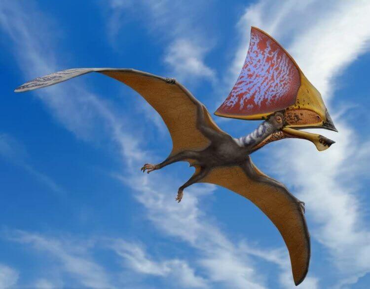 Найденная благодаря полиции окаменелость раскрыла секреты доисторических летающих рептилий