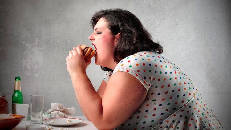 Почему бурый жир необходим для нормальной работы мозга