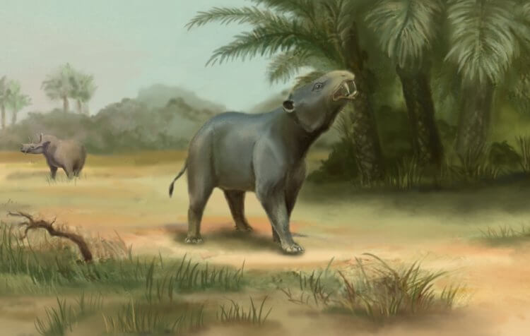 В Египте найдены кости древнего кита с четырьмя лапам