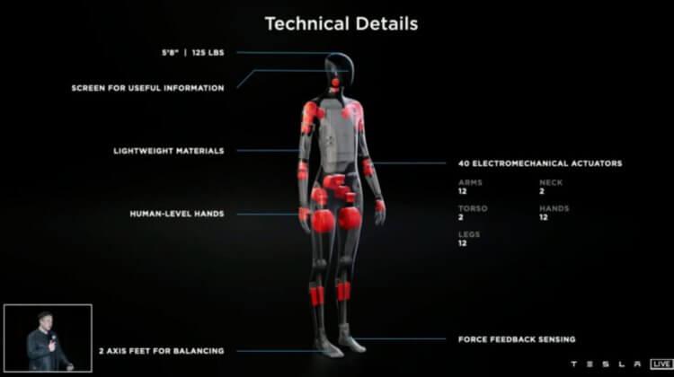 Tesla представит робота-гуманоида в 2022 году. Каким он будет?