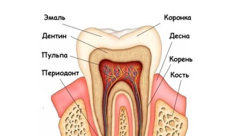 Как отбеливатели для зубов приводят к их разрушению?