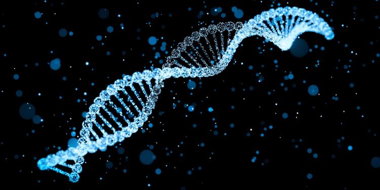 Ученые выяснили от каких генетических особенностей зависит рост человека