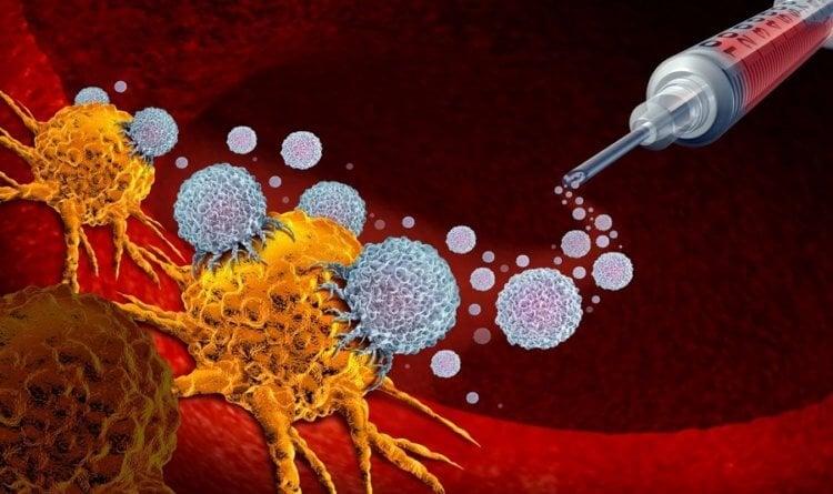 Ученые нашли способ как научить иммунитет бороться с раком