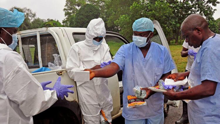 Вирус Эбола способен «спать» в организме человека длительное время