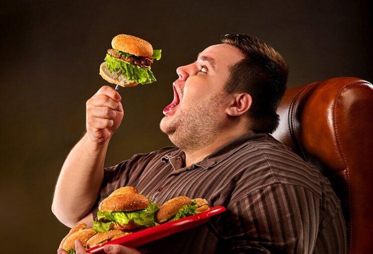 Фастфуд поражает мозг и вызывает слабоумие