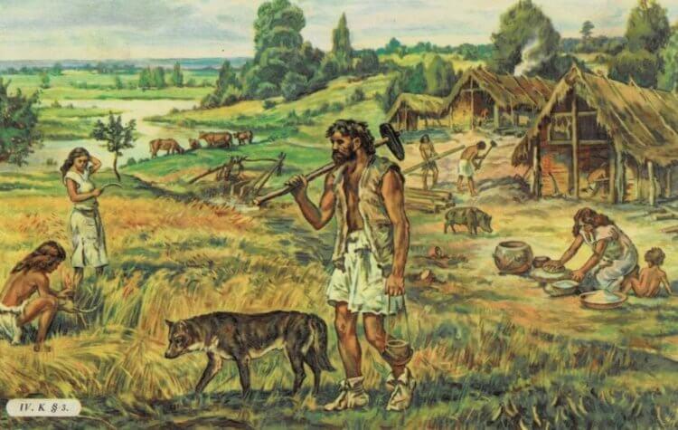 Когда древние люди научились шить одежду и какой она была?