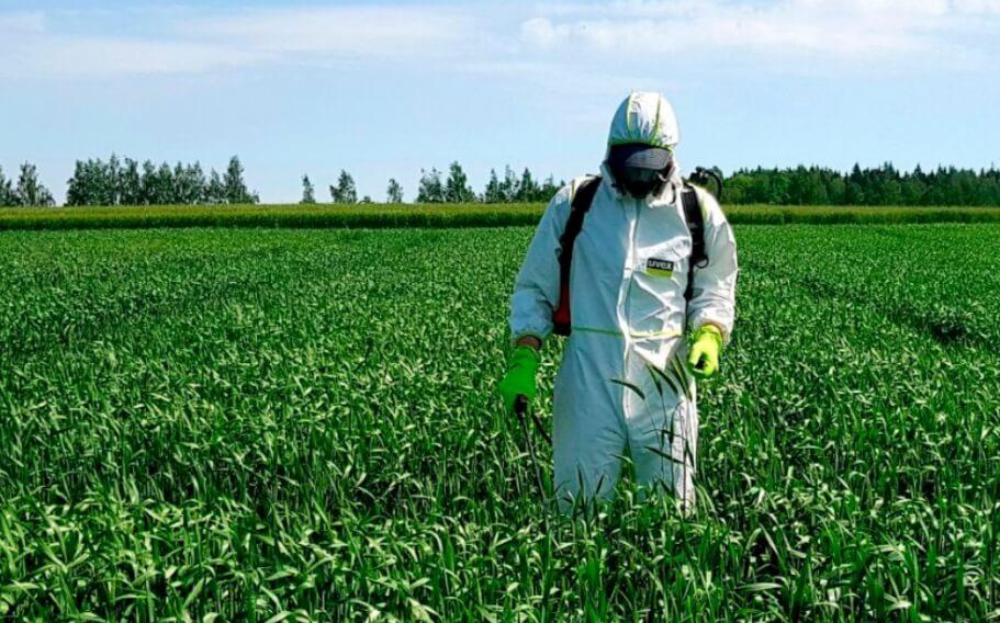 Как фермеры борются с вредителями и какой способ самый лучший