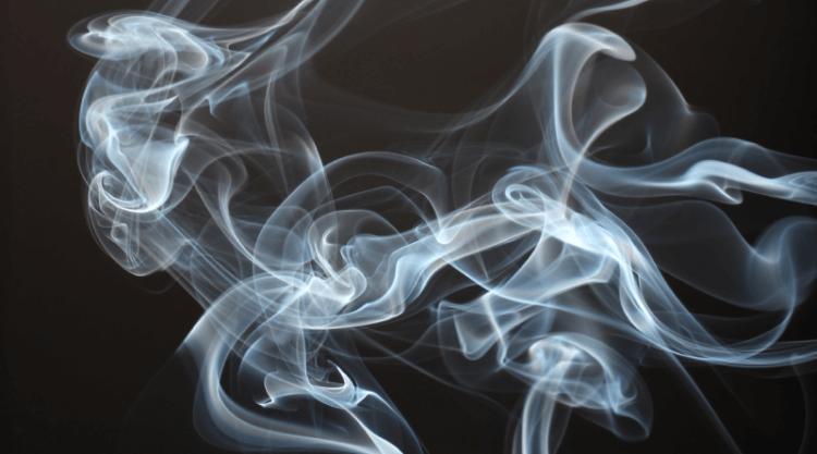 Курильщики возможно реже заражаются коронавирусом — в чем секрет феномена?
