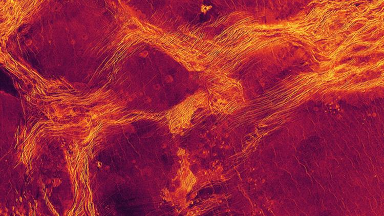 Поверхность Венеры движется как лед, дрейфующий в океане