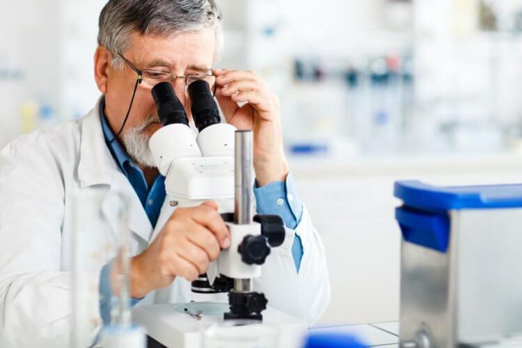 Ученые нашли у животных мутацию гена, которая блокирует размножение ВИЧ и вируса Эбола