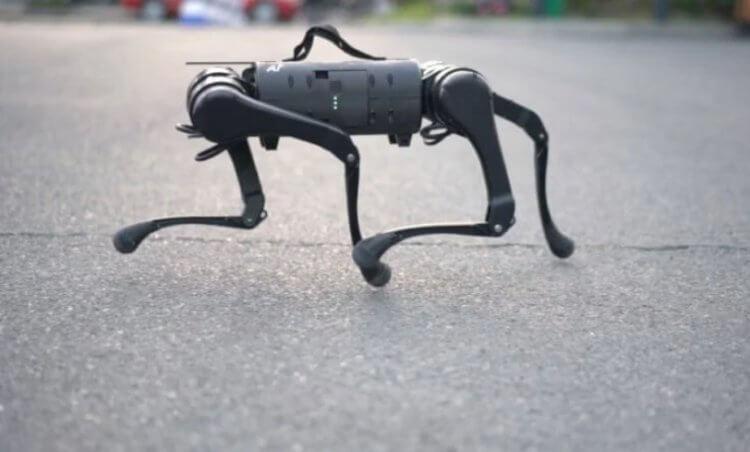 В России создан четвероногий робот как у Boston Dynamics
